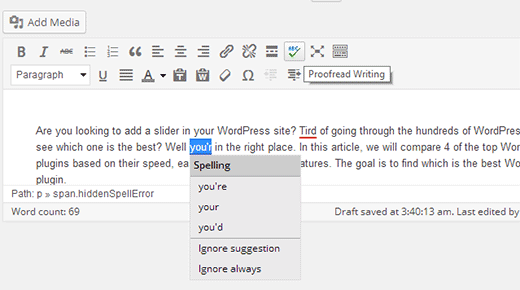 Checking spelling and grammar mistakes in WordPress post editor